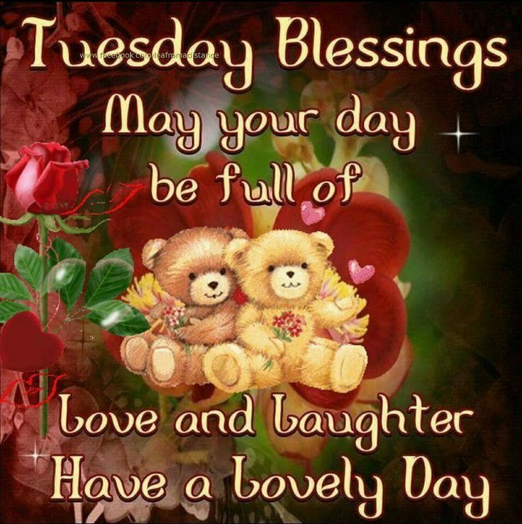 Tuesday Blessings Have A Lovely Day good morning tuesday tuesday quotes good…