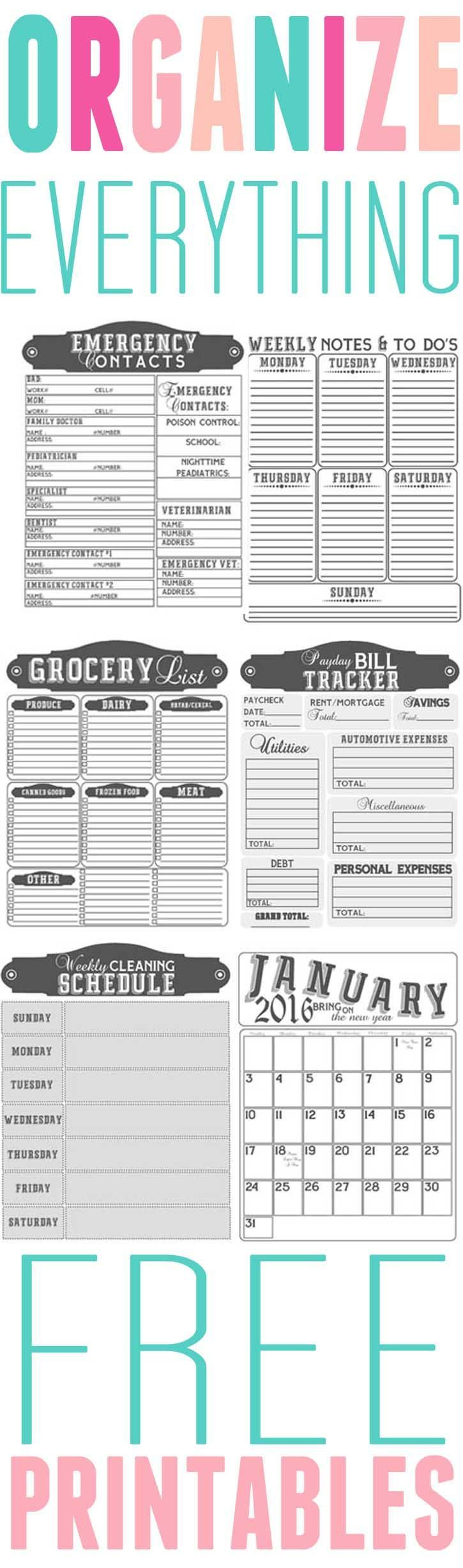 Get Organized- Free printables to organize your home in 2016
