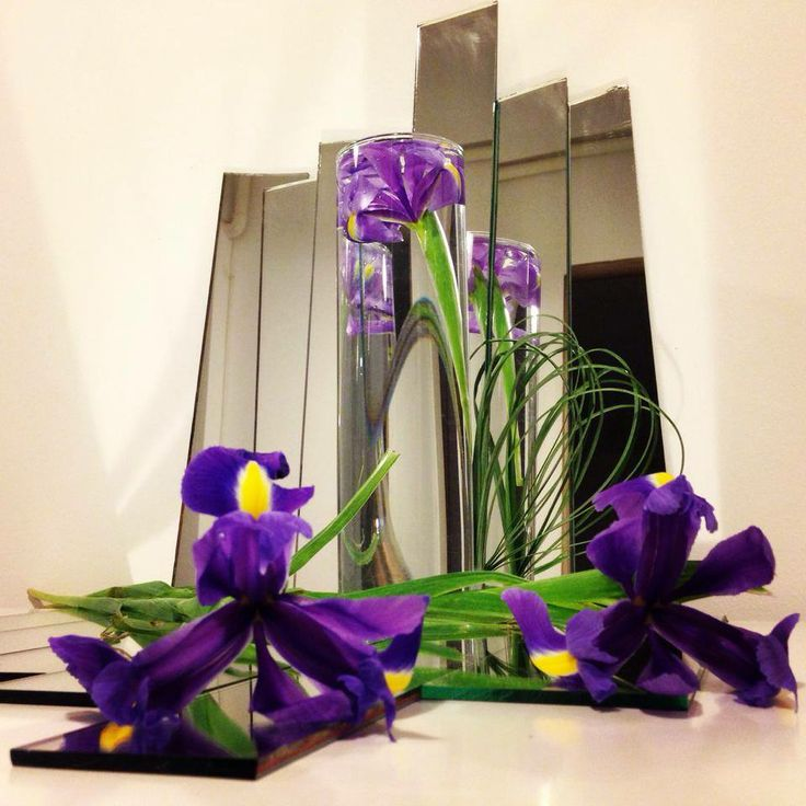 Iris in the mirror