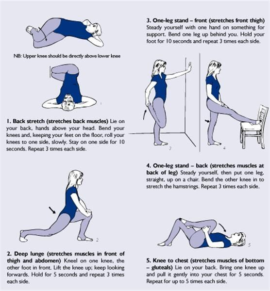 Step By Step Finding Indispensable Issues For Strength Training: 23 Best Back Stretching Exercises For Lower Back Pain
