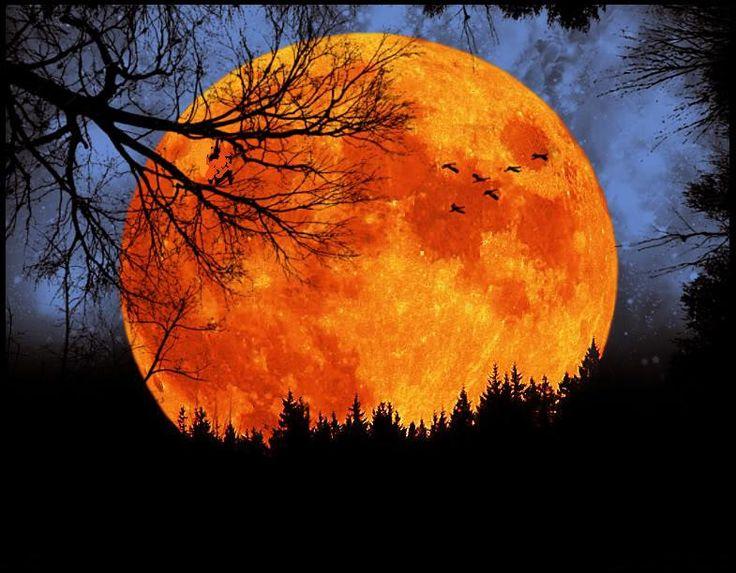 On this Harvest Moon...