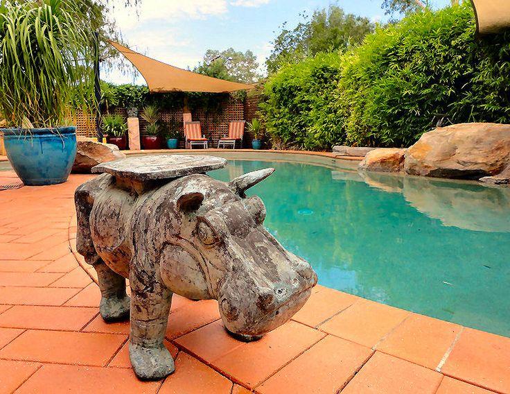 Relax in the garden surround of the lagoon pool at Vatu Sanctuary... www.vatusanctuary.com.au
