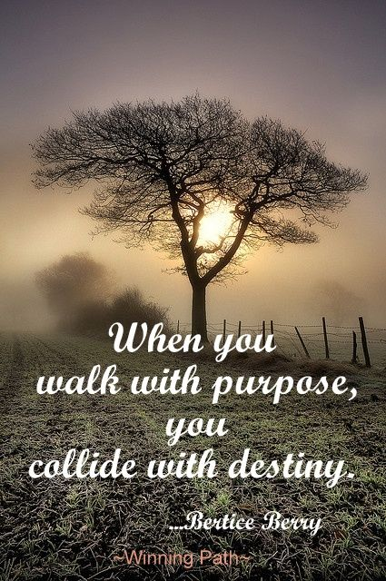 When You Walk with Purpose, You Collide with Destiny...
