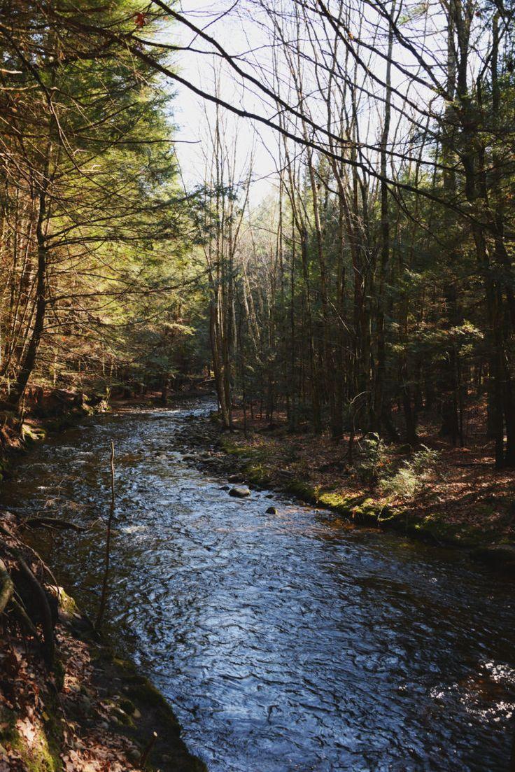 Amythest Brook, Amherst, MA Drawntoecology.com