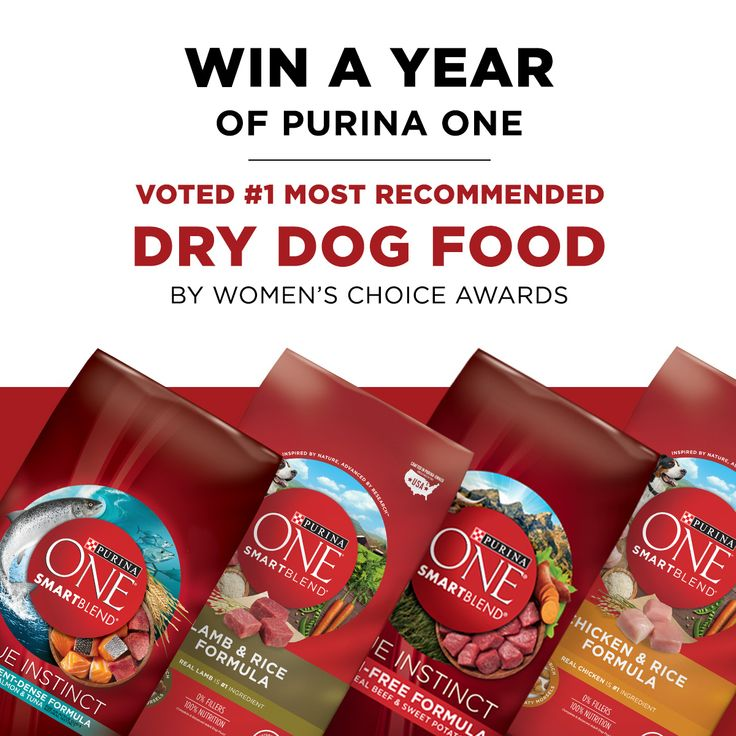 WIN A YEAR OF FREE Purina ONE dry dog food of your choice – voted the No.1 Most Recommended Dry Dog Food by Women's Choice Awards 2017. Enter Now!