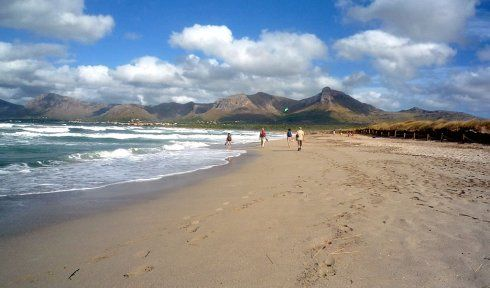 http://www.seemallorca.com/beaches/son-serra-de-marina-beach-mallorca-son-serra-de-marina-664487