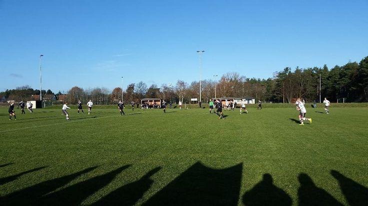 Schatten der St. Pauli Fans auf dem Spielfeld