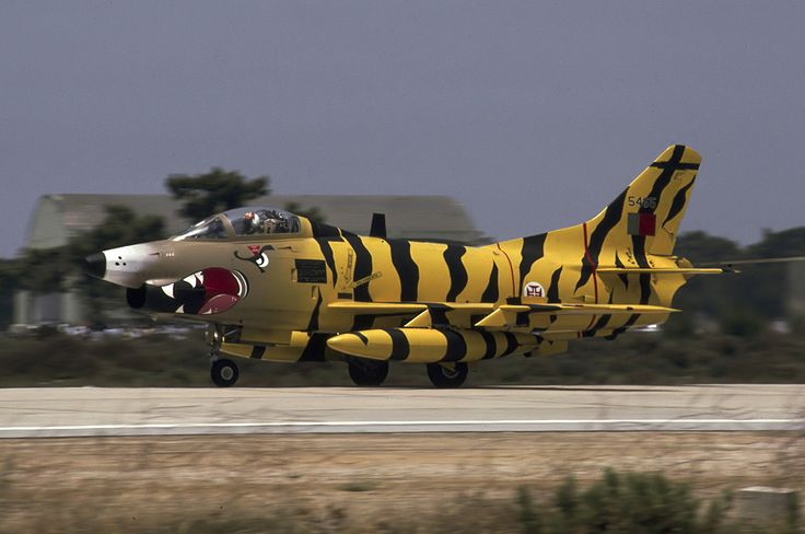 Portuguese Air Force Fiat G-91R3 (1991 Tiger Meet Livery)