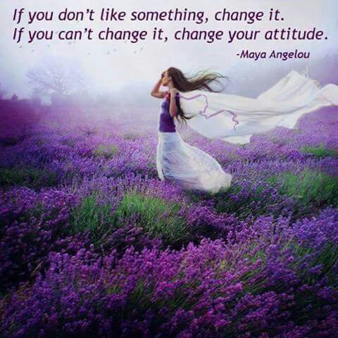 Pin by Elspeth Henders on quotes to change | Lavender ...