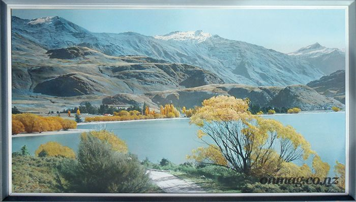 Whites photo of Lake Wanaka in the 1960's - it still looks like that!