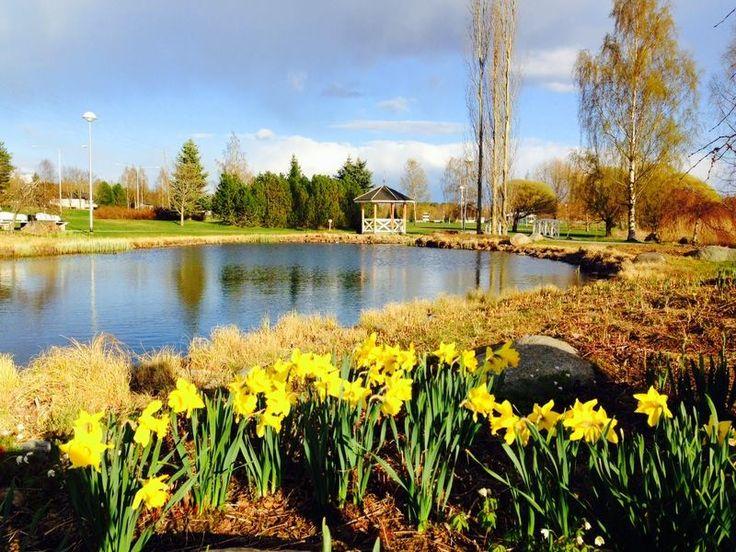 The beautiful town of Ikaalinen