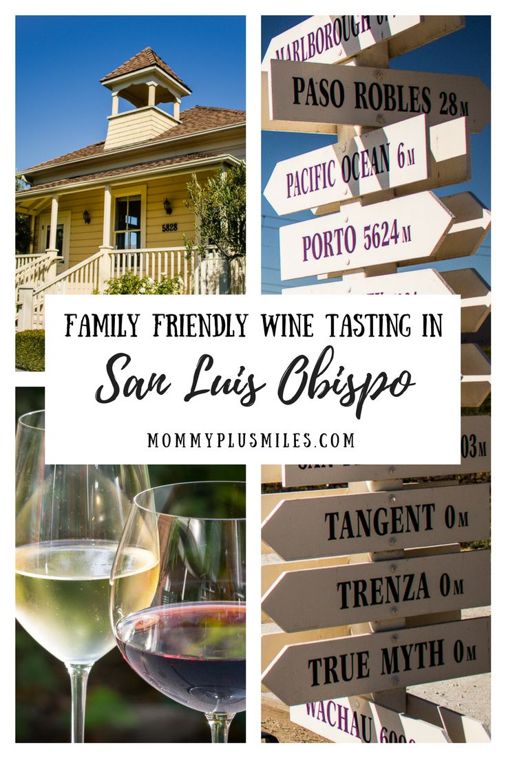 5 family friendly spots for wine tasting in san luis