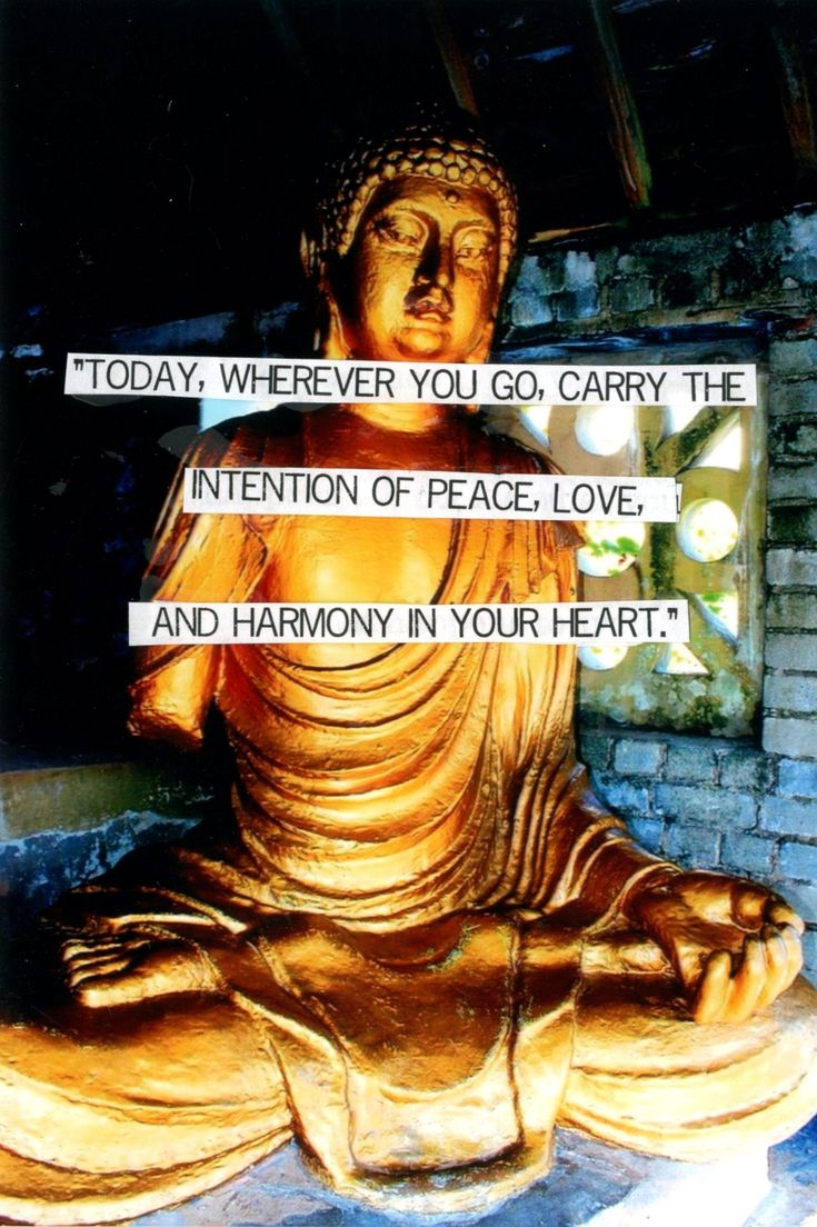 focusing on good vibes & energy, ignoring negative thoughts & people. I have a lot to offer, I am an amazing woman, &anyone is lucky to have me & my love in return. Ready for happiness and positive things # buddha#quote