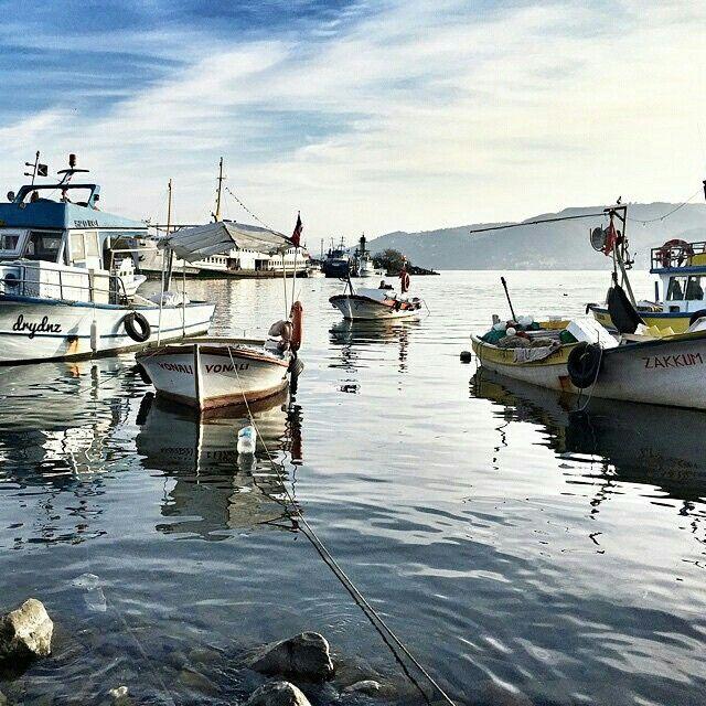 #ordu #perşembe #blacksea #karadeniz #turkey #memleketordu #travel #amazing #nature