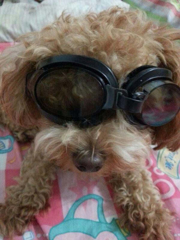 Im a pilot! Teeheee