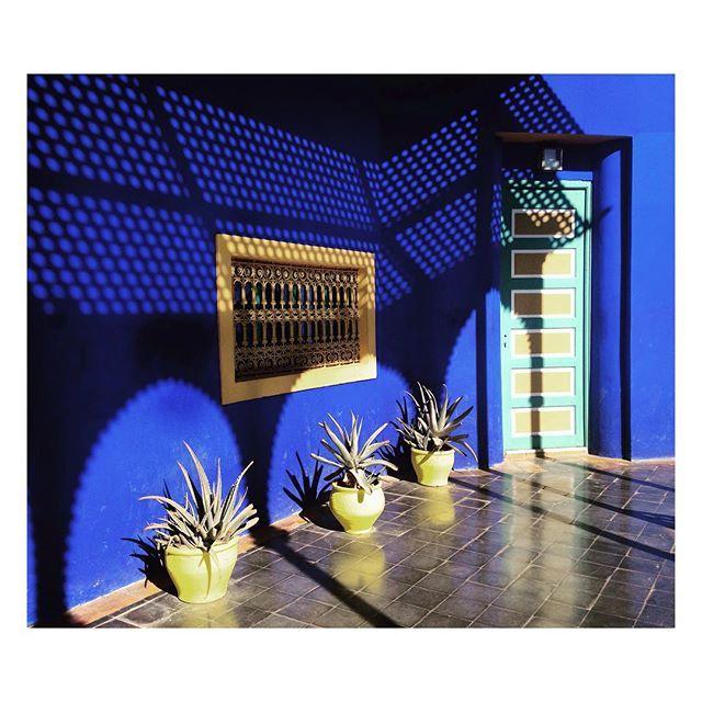 #marrakech #blue #yellow #gardens #artdeco #morroco #almagreb  #dream come #true  #pasonoroeste :)