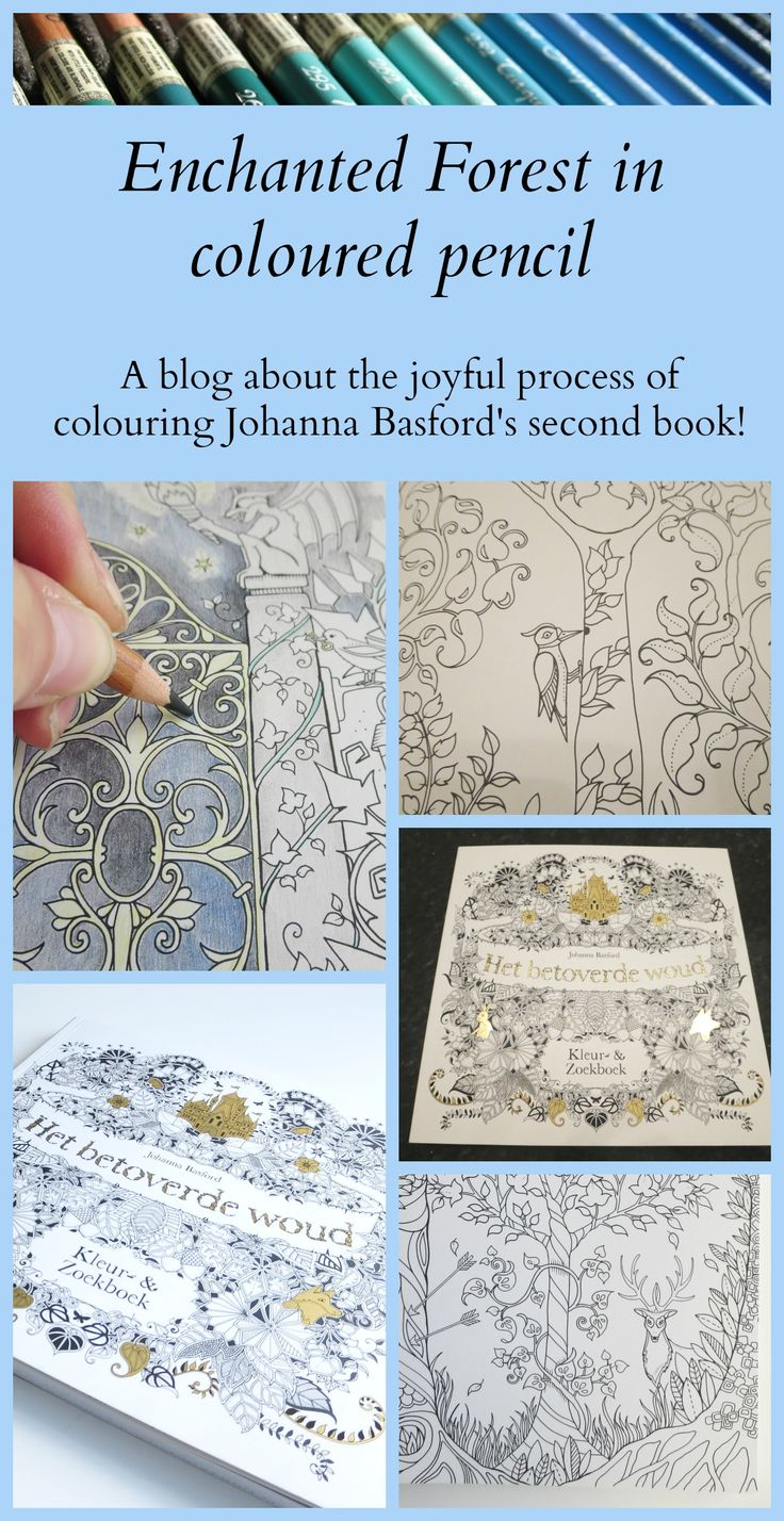 Johanna Basfords Enchanted Forest I Started Colouring In The Book