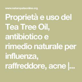 Proprietà e uso del Tea Tree Oil, antibiotico e rimedio naturale per influenza, raffreddore, acne | Naturopataonline