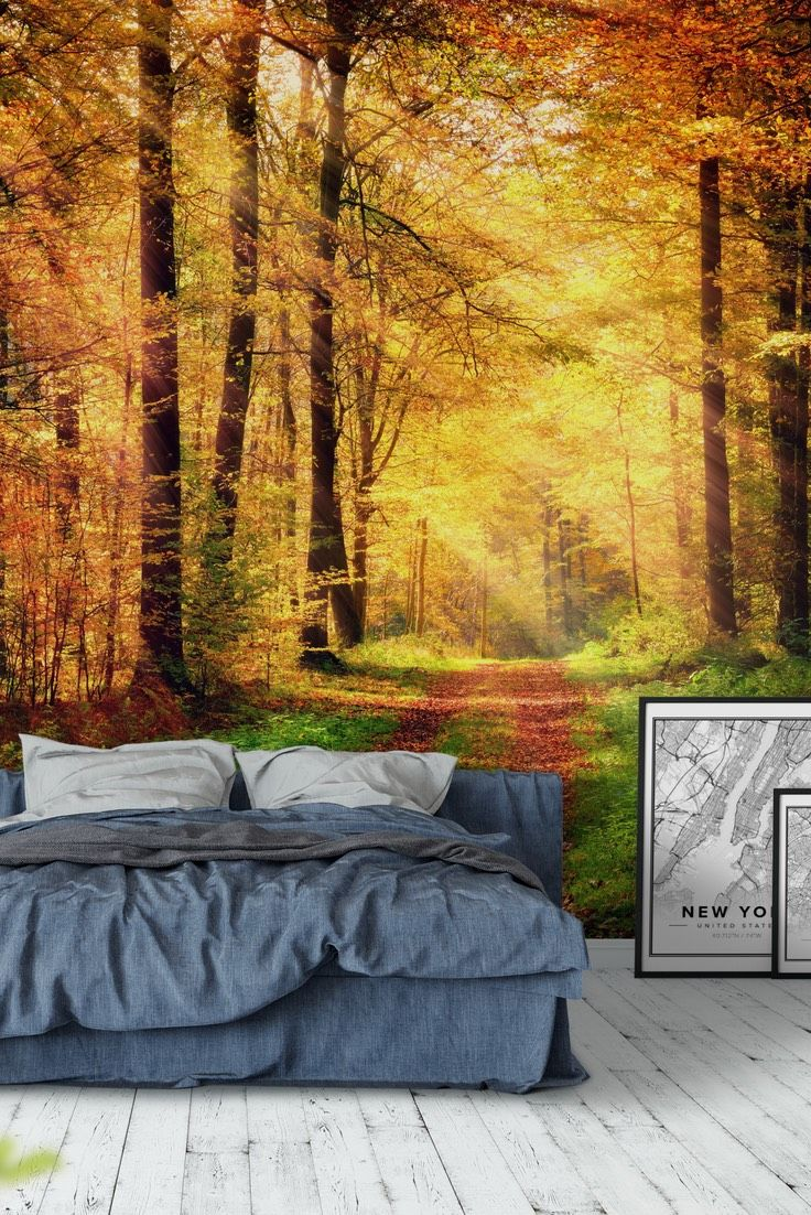90 best forest wall murals images on pinterest photo wallpaper autumn forest 2 wall mural wallpaper amipublicfo Images
