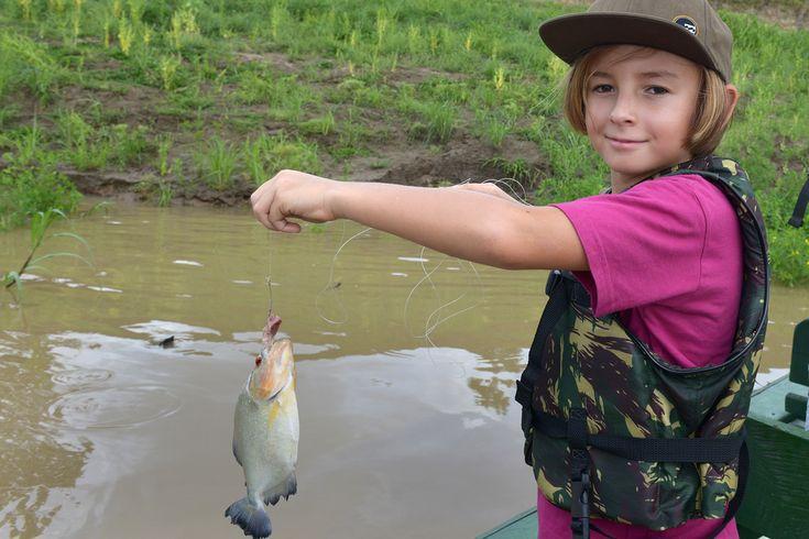Onko mitään järkeä viedä lapset lomalle Amazonille?  Poika pulahti jokeen delfiinien kanssa. Myöhemmin hän onki sieltä lounaaksi piraijoita. Hän jopa suostui tanssimaan heimokylän pikkutytön kanssa – vastentahtoisesti ja yhä edelleen tapausta häveten, mutta kuitenkin.  http://www.exploras.net/matkablogi/30122015