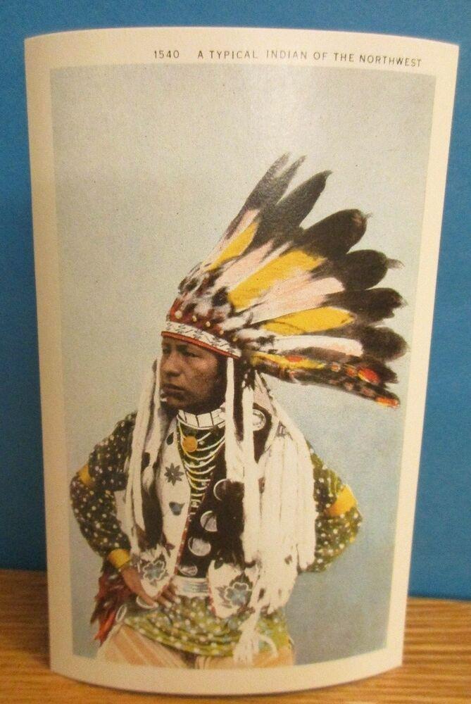 Feather Headdress Northwest Indian Native American Postcard