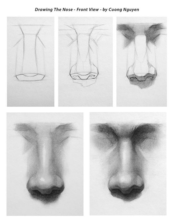 Drawing the Nose - Front view step by step by Cuong Nguyen…