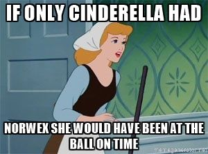 Norwex does save you time.  Cinderella could have ditched her mop bucket for a spray bottle of water and the Superior Mop System with its dry dusting mop and wet mop pads, and a Rubber brush.  She could have even dust the walls with it and if she added the Envirowand to the Telescopic handle, she could have dusted the chandeliers without hunting for a ladder.   Norwex could be your fairy godmother here!