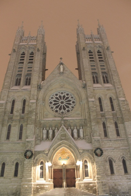 Church of Our Lady Immaculate in downtown Guelph