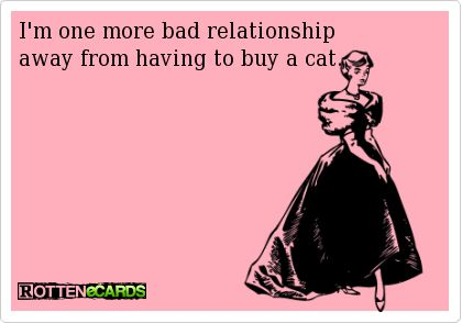 I'm one more bad relationship   away from having to buy a cat.