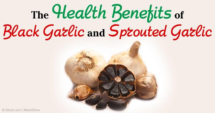 Like other complex plant foods, garlic contains a wide range of phytocompounds that produce a wide variety of responses in your body. http://articles.mercola.com/sites/articles/archive/2014/04/21/sprouted-black-garlic.aspx