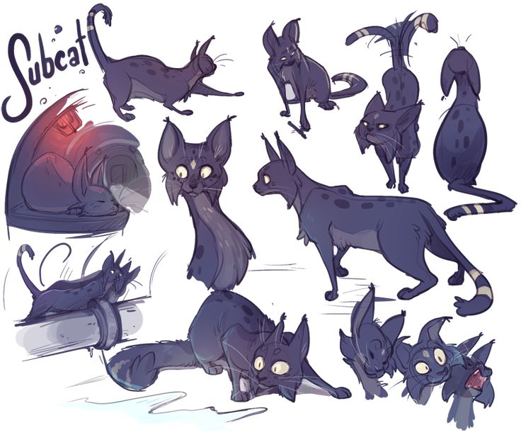 WOW OK Just randomly started doodling Subcat tonight and spiraled out of control into this little sketchpage. I think the last time I posed art of him was 2012? Ahaha, so sad XD