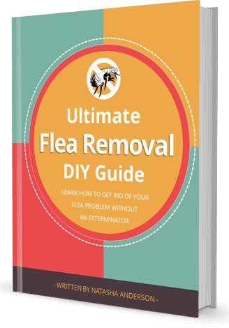 Have you ever thought of using borax for fleas? While its great for flea control, you need to learn how to use it properly to get results.