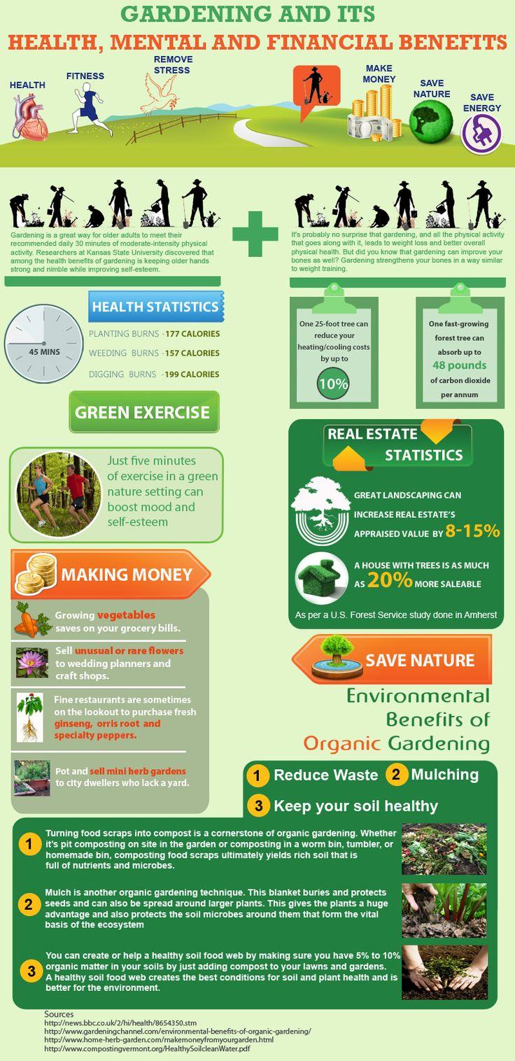 Gardening Benefits Infographic Health Infographics