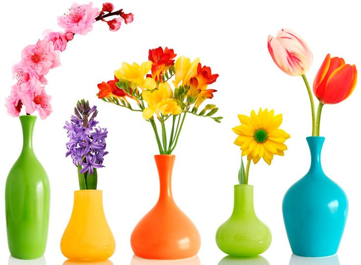 Что нужно учитывать выбирая для себя или в подарок вазы для цветов? Несколько полезных правил и советов. Адреса и цены, где можно купить вазу для цветов.
