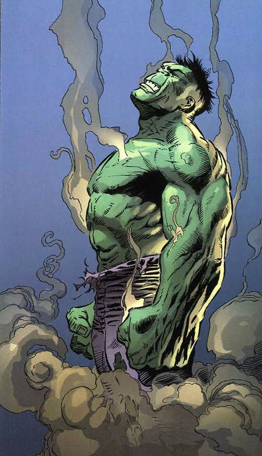 The Hulk...................                                                                                                                                                                                 More