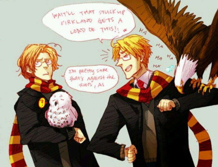 Hetalia / Hogwarts X-over with Canada and America