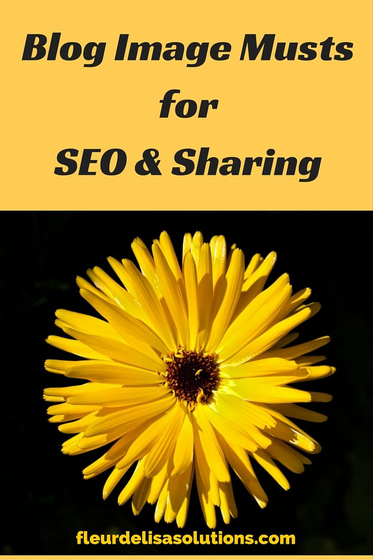 Blog Image Musts for SEO and Sharing   If you blog, then more than likely you understand the importance of a blog image or images as they relate to sharing your blog across social media platforms.... http://www.fleurdelisasolutions.com/blog-image-musts-seo-sharing/