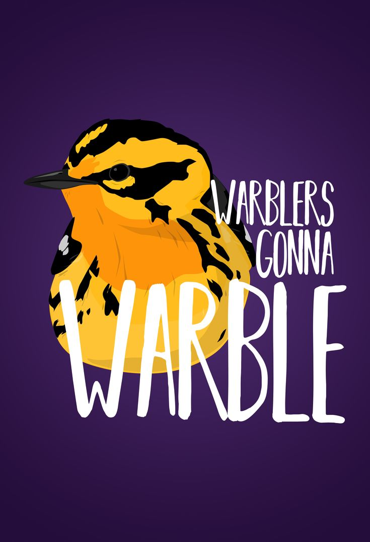 Warblers gonna warble, show the Bird Nerd in you with this funny bird pun tee shirt