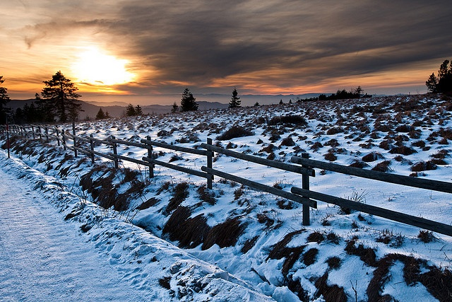 """""""Winter Sun""""  Black Forest, southern GERMANY"""