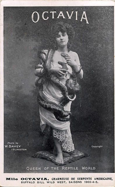 """The lady snake charmer was a staple feature of the sideshow at the turn of the 20th century. Known as the """"Yankee Snake Charmer,"""" Octavia toured with Buffalo Bill's Wild West show. In a time when long skirts and sleeves were the established fashion, Octavia's form-fitting, sleeveless outfit covered with writhing snakes provided a sensual aspect to her act."""