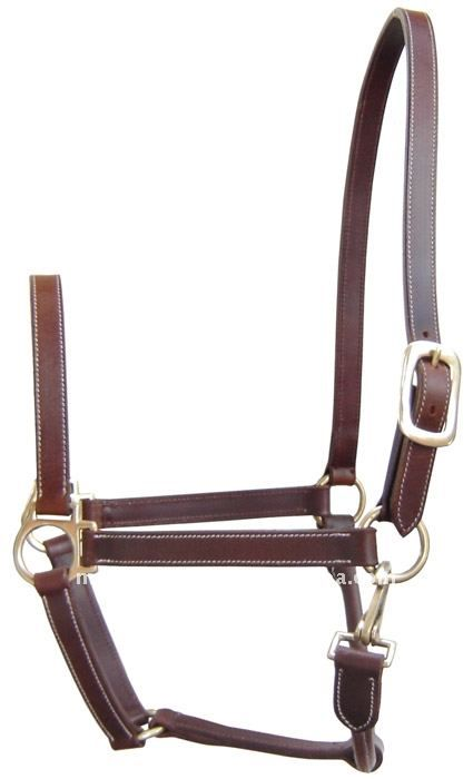 Simple leather halter---I kind of want one for my horse...