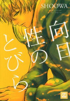 Japanese Yaoi / BL: SHOOWA 『日向性のとびら』