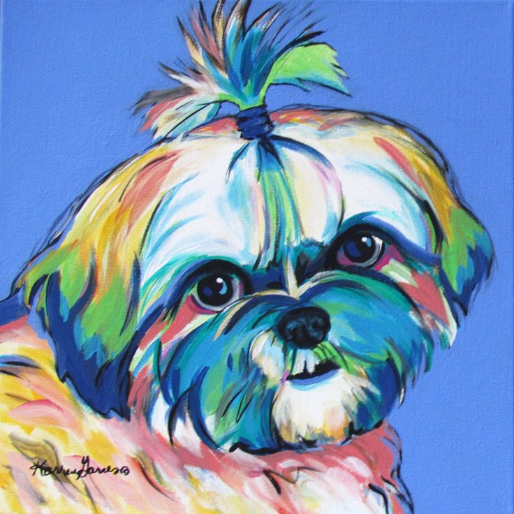 12x12 acrylic pop art shih tzu dog portrait. custom work welcome