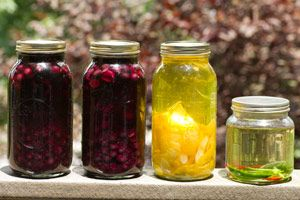 Best site I've seen for homemade liquor recipes. So many cordials and infusions I want to make including grenadine and absenthe!