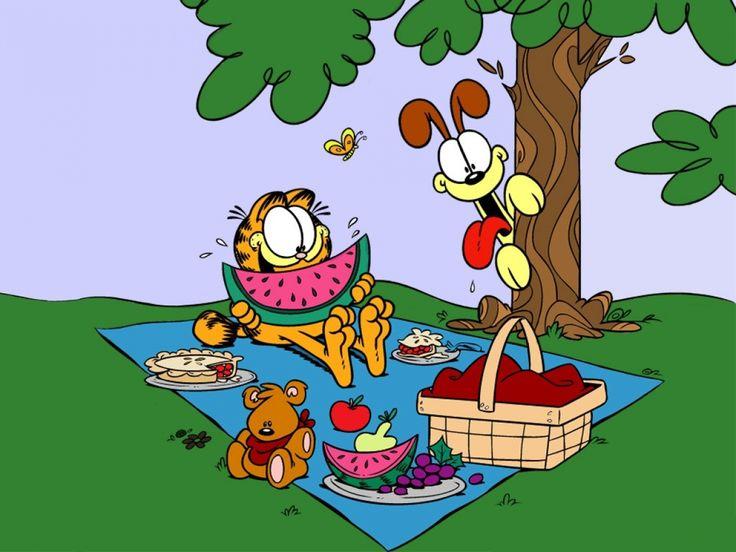 585 best garfield images on Pinterest  Garfield pictures