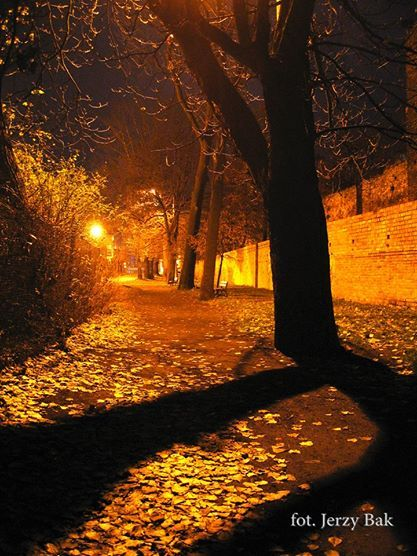Spacerkiem po Namysłowie wieczorową porą wzdłuż zabytkowych murów obronnych otaczających nasze miasto. https://www.facebook.com/SalvadoFotografia/photos/pb.480472015357839.-2207520000.1402740401./554746737930366/?type=3theater