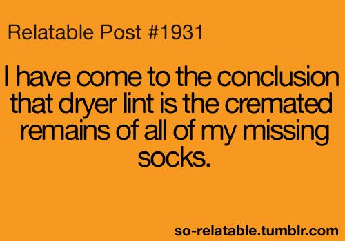 FACT: Funnies Pictures, Dryer Lint, Giggl, Funnies Things, Socks, Funnies Quotes, So True, Funnies Stuff, True Stories