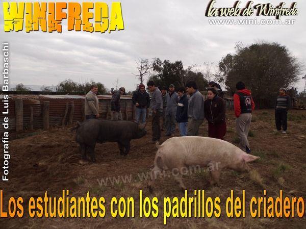 Estudiantes de Agronomía, en prácticas en criadero de cerdos