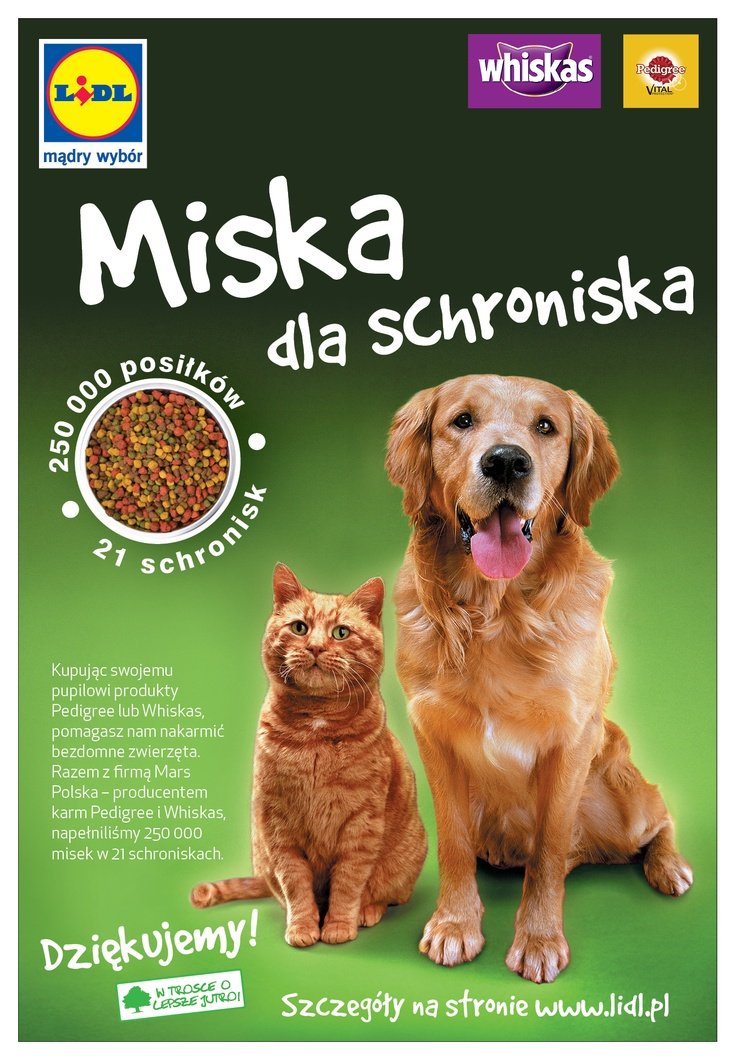Miska dla schroniska! Razem z firmą Mars Polska – producentem karm Pedigree i Whiskas, napełniliśmy 250 000 misek w 21 schroniskach dla zwierząt.