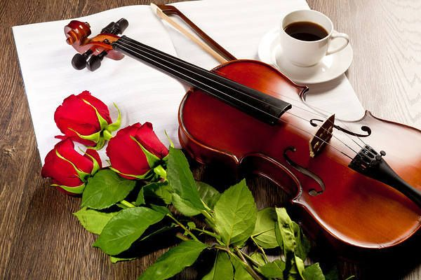 Roses Violin and Coffee Background